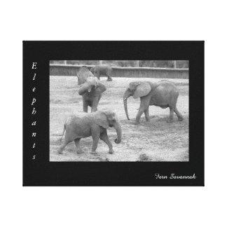 Elefantes na lona da galeria pelo savana da impressão em tela