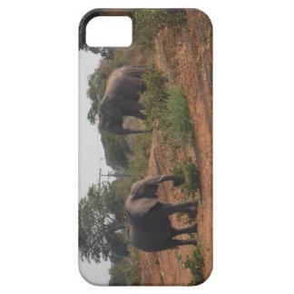 Elefantes no selvagem capa para iPhone 5