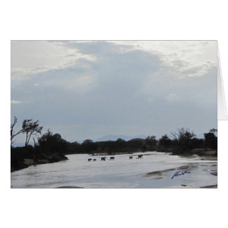 Elefantes que cruzam o cartão do rio
