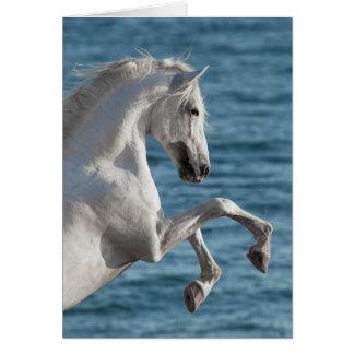 Elevação do cavalo de mar - cartão do cavalo