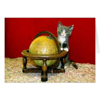 Em todo o mundo cartão do gatinho do salvamento