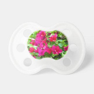 Emblema floral do bougainvillea da flor do viagem chupeta de bebê