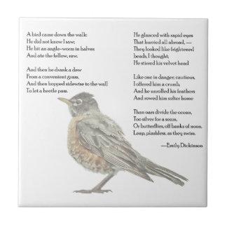 "Emily Dickinson ""azulejo do poema no jardim"""