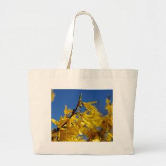 Emissário de primavera bolsas para compras