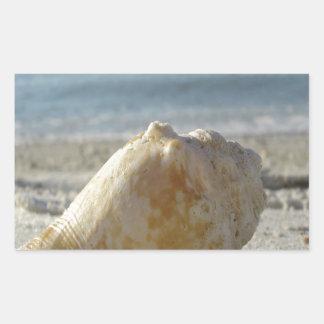 Encalhe uma água clara Shell Adesivo Retangular