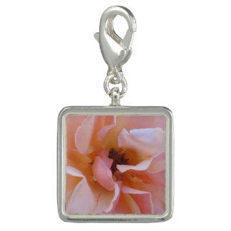 Encanto com fim do rosa acima das pétalas macias charm com foto