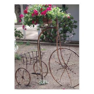 Encanto do jardim cartoes postais