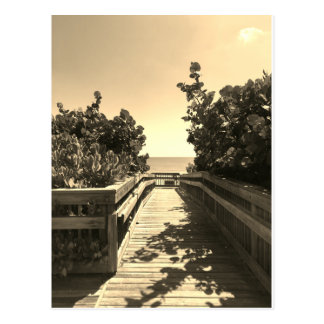 Encontre-me no cartão da praia