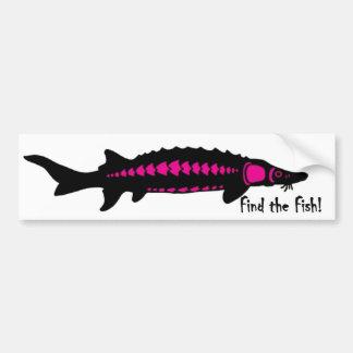 encontre os peixes, PINK2 Adesivo Para Carro