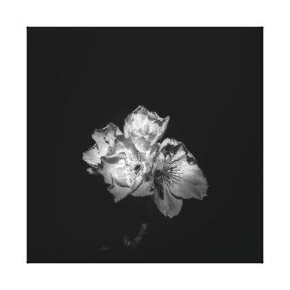 Enegreça uma lona branca da flor impressão em tela