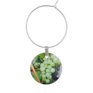 Enfeite De Taças De Vinho Encantos do vinho da uva