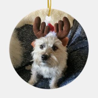 """Enfeites de natal da """"rena"""" de Terrier de monte de"""