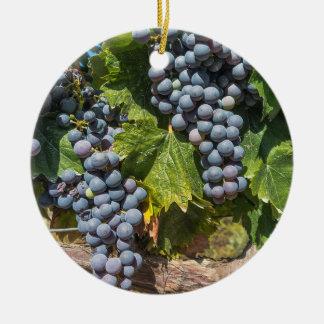 Enfeites de natal das uvas para vinho