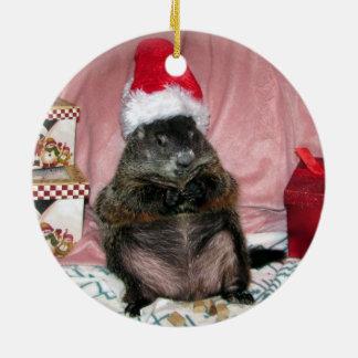 Enfeites de natal de Groundhog do animal de