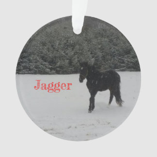 Enfeites de natal de Jagger