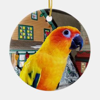 Enfeites de natal do papagaio de Sun Conure