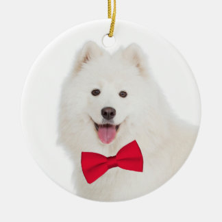 Enfeites de natal do Samoyed
