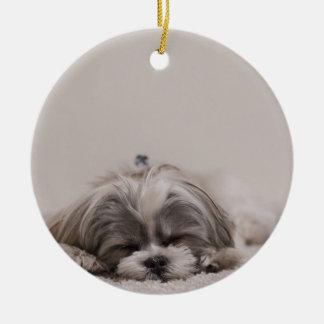 Enfeites de natal do tzu do sono Shih, cão do sono