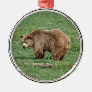 Enfeites de natal do urso de urso