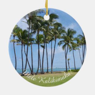 Enfeites de natal havaianos