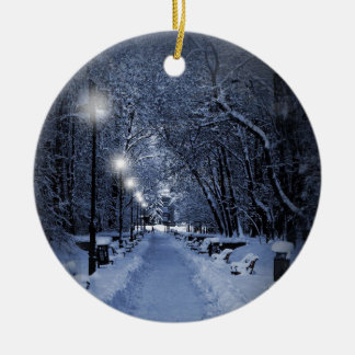 Enfeites de natal nevado da cena do inverno
