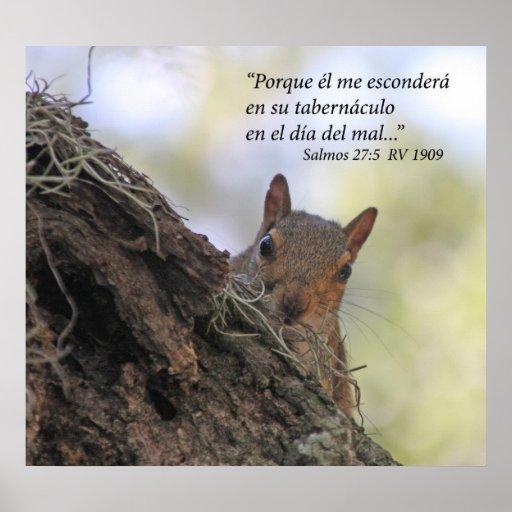 Engodo Ardilla de Salmos 27-5 Poster