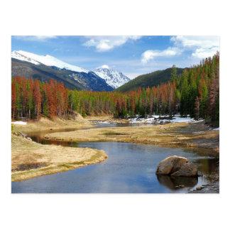 Enrolamento o Rio Colorado com montanhas e pinhos Cartão Postal