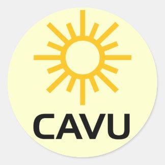 + ensolarada CAVU da aviação Adesivos Redondos