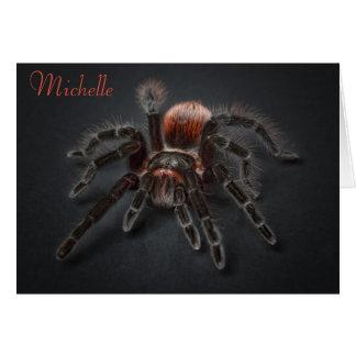 Envelhecimento assustador de Arachnophobia da Cartão