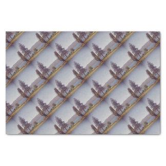 Envoltório de lenço de papel de Quinault do lago