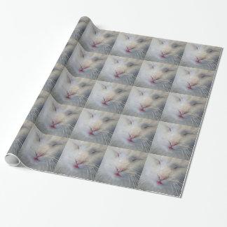 Envoltório de presente doce, branco do gato papel de presente