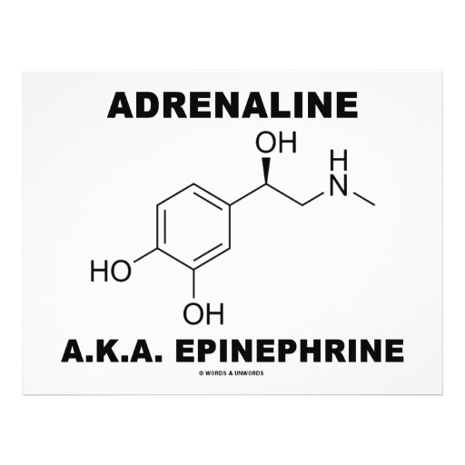 Epinefrina da adrenalina A.K.A. (química) Panfletos Personalizado
