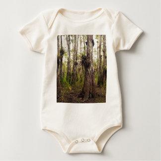 Epiphyte Bromeliad na floresta de Florida Body Para Bebê