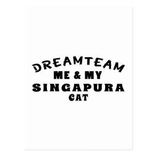 Equipa ideal mim e meu gato de Singapura Cartão Postal