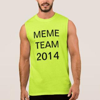 equipe 2014 do meme regata
