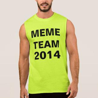 equipe 2014b do meme regata
