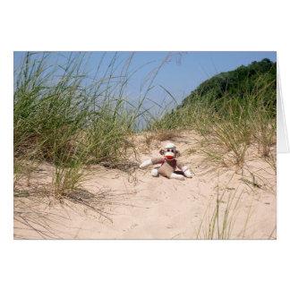Ernie o cartão vazio de dunas de areia do macaco