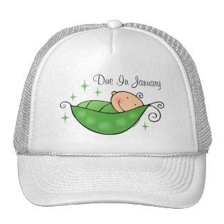 Ervilha em meu chapéu personalizado vagem boné