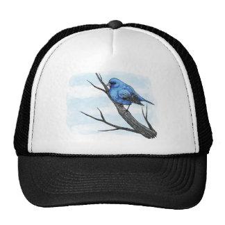 Esboço azul do pássaro boné