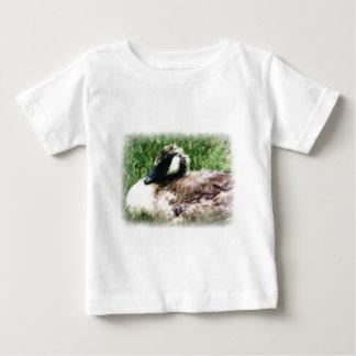 Esboço canadense da foto do ganso do bebê tshirts