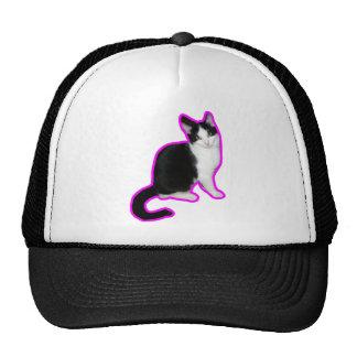 Esboço cor-de-rosa do gato bone