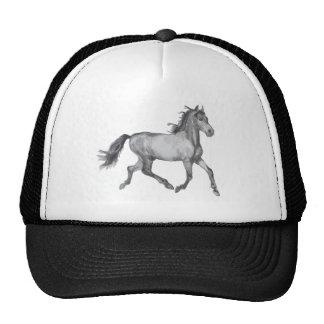 Esboço do cavalo preto e branco bone