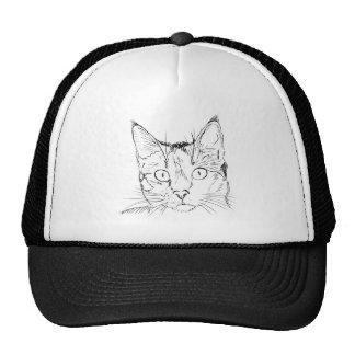 Esboço do retrato do gato preto boné