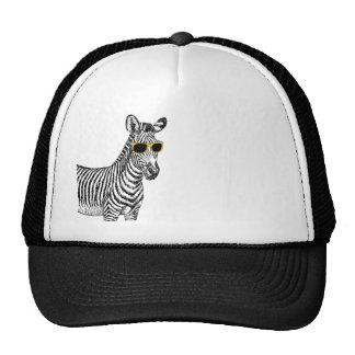 Esboço engraçado bonito legal da zebra com vidros  boné