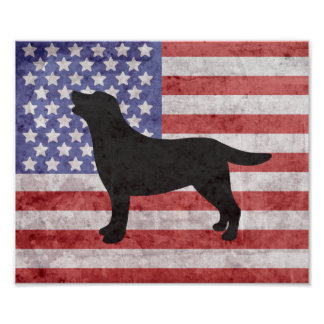Esboço patriótico 4o de Labrador do poster de Pôster