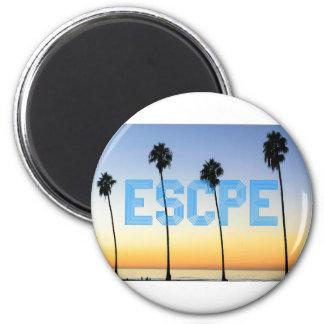 Escape ao design das palmeiras imã