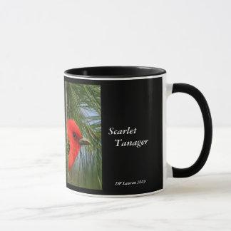 Escarlate da caneca do Tanager
