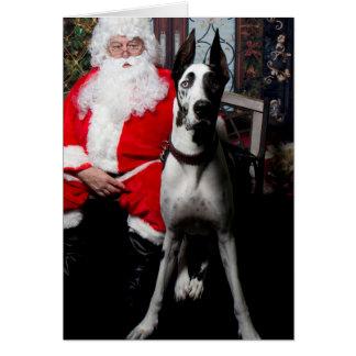 Escavadora o cão da terapia, cartões de Natal