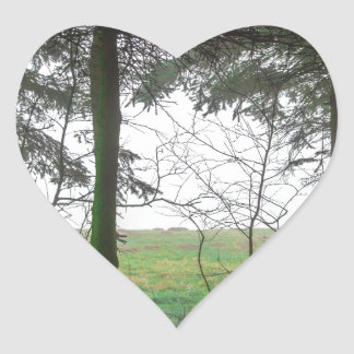 Esclarecimento de negligência da floresta na névoa adesivo coração