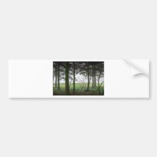 Esclarecimento de negligência da floresta na névoa adesivo para carro